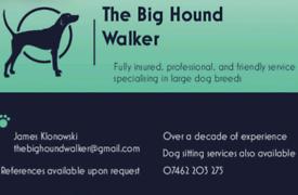 The Big Hound Walker (Dog Walking &Sitting Services)