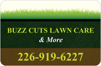 LAWN CARE/MAINTENANCE/GRASS CUTTING/AERATION/SPRING CLEAN UP