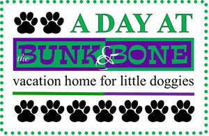 a day at theBUNK&BONE vacation home for little doggies