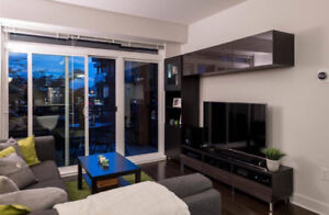modern building,2014, 2bdr,2 bath,real state  condo for rent