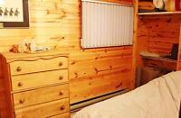 Lovely Winnipeg Beach Cabin Available For Summer