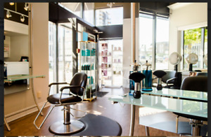 Successful Hair Salon with Fantastic Location!!!