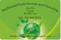 Landscaping, lawn care, trail development, and more
