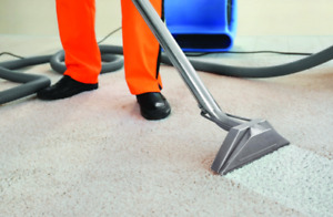 Cambridge Carpet Cleaning -- Pro. Steam Carpet Cleaners & MORE