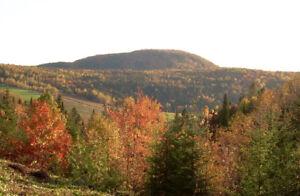 """Terrain (6 acres) avec """"sommet de montagne"""" et """"bord de l'eau"""""""