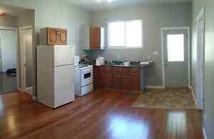 Now available renovated 2 bedroom duplex
