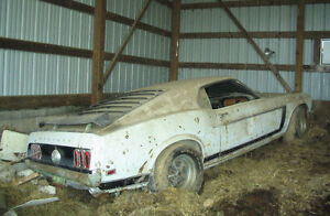 Looking for old cars