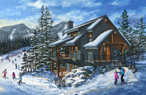 Swoon worthy executive cabin on ski slopes