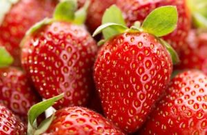 Strawberry Pickers Wanted