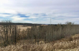 10 Acres, Untouched Potential in  Rural Thorhild County