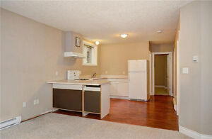 Spacious 1 Bedroom 1 bath apartment close to Iron Horse Trail, G