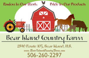Farm Fresh, All Natural, Locally Raised Pork/Beef/Lamb For Sale