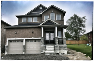 WEST END - 4 BEDROOM EXEC BRAND NEW HOME