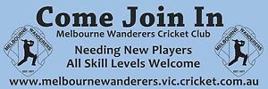 Cricket players wanted South Yarra Stonnington Area Preview