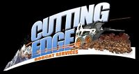 BOBCAT SERVICES Landscaping , and concrete driveways