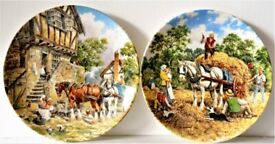 Wedgwood wall/table plates
