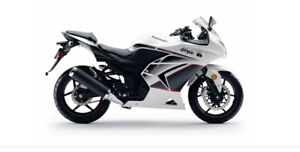 Special Edition Pearl White Ninja 250