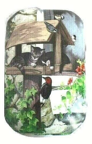 Kittens Napping in Birdhouse Hinged Trinket Box Persis Clayton Weirs Wild Wings
