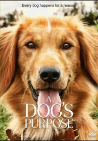 Childrens dvds (A dogs purpose, Disney, Dreamworks etc)