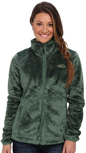 Top 10 North Face Jackets | eBay