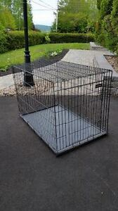 """""""Giant"""" Petmate Dog Crates/Kennels"""