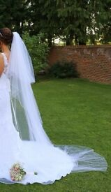 Long Diamante Wedding Veil (White)