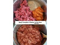 dogs food raw mince