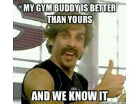 Seeking female early morning gym buddy puregym