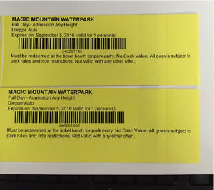 2 - All day passes for Magic Mountain Waterpark