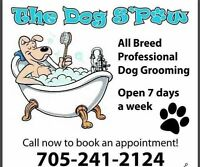 **$5 off new clients! Professional All Breed Dog Grooming**