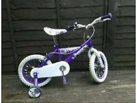 Little Girls Purple Bike