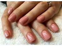 Gorgeous Shellac Nails! - Trained nail technician