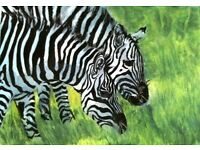 Zebra Water colour painting