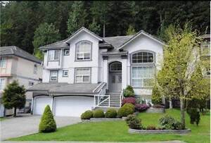 $3200 / 7br - 4000ft2 - 7Bed+4bath coquitlam