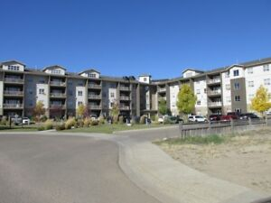 Executive 2 Bed, 2 Bath Condo - AB Side ( Cornerstone)