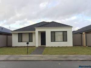 4*2 for rent $375 p⁄w in Piara Waters (near Canning Vale) Forrestdale Armadale Area Preview