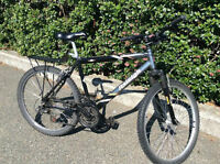 Mountain-Bike in Excellent Shape