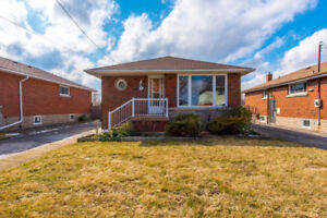 Newly Renovated 3 Bedroom Bungalow in Hamilton Mountain