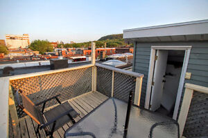 Summer sublet: sunny flat with rooftop terrace in the Mile End