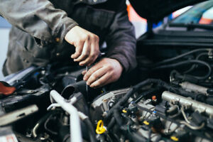 Undercoating, oil changes and much more!