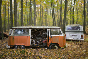 Wanted VW Bus