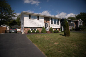 Beautiful Home and Property in Woodlawn