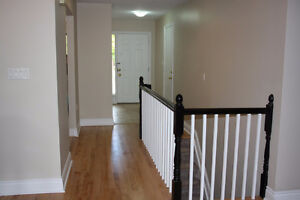 Are you looking for a experienced painter or subcontractor? Sarnia Sarnia Area image 9