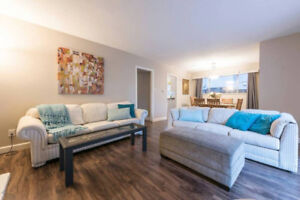 Beautiful, Bright, Fully Furnished 3 Bed 2 Bath House