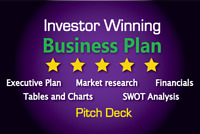 I will write a professional business/financial plan for you!