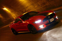 2015 Ford Mustang Gt pp pack trade for Shelby gt500 lots of mods