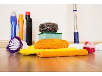 Domestic Housekeeping service