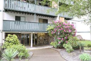 1 Bdrm + Balcony Across Nanaimo General Hospital