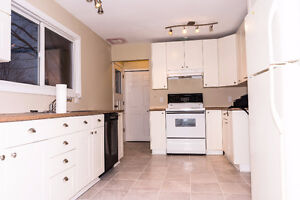 FOR RENT:3+1BED + 2FULL BATH NEWLY RENOVATED BUNGALOW-BARRHEAVEN