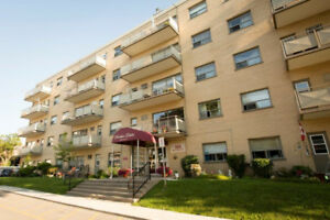 Beautiful 1 Bedroom Suite Available October 1st Rental